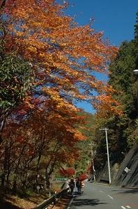 登山口までの道