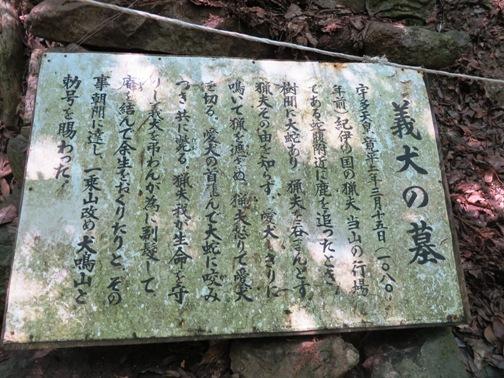 IMG_7631七宝瀧寺-20