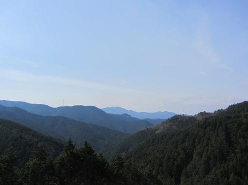 IMG_3931yoshinosakura-27.jpg