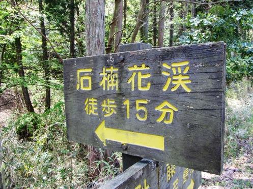 IMG_4248sigahonshakunagegunraku-01.jpg