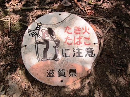 IMG_4330sigaken-kirakira14.jpg