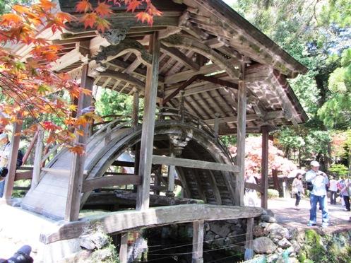 IMG_5484byakugoujisonohoka-06.jpg