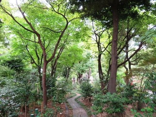 IMG_6234ikutamashrine-15.jpg