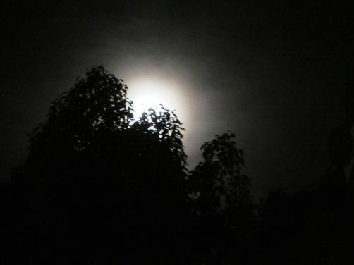 IMG_6779mitarashimatsuri-16.jpg