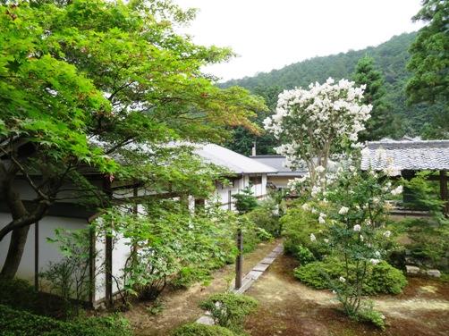 IMG_7143entsuji-10.jpg