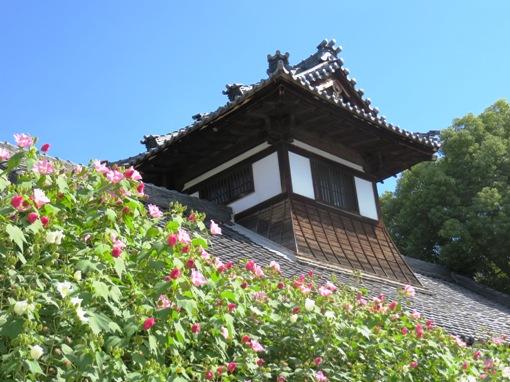 IMG_8397higashibetsuinoosukannon-03_2013102113220348f.jpg