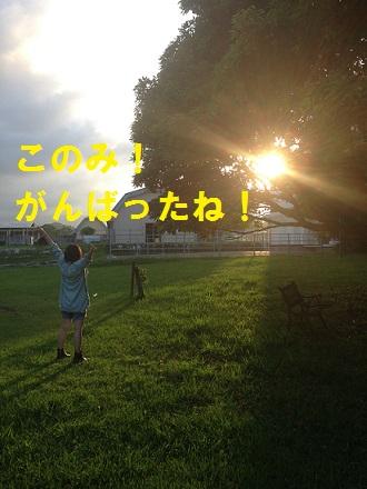 IMG_0184-1.jpg