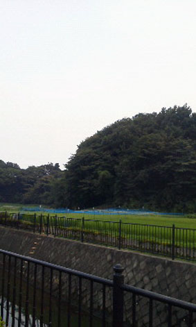tsurukawaNEC_0509.jpg