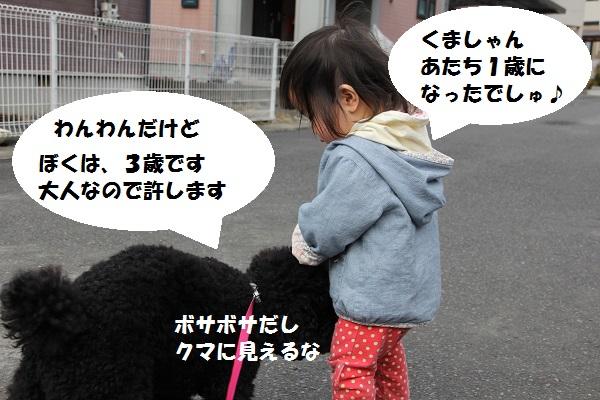 10_20130404153800.jpg