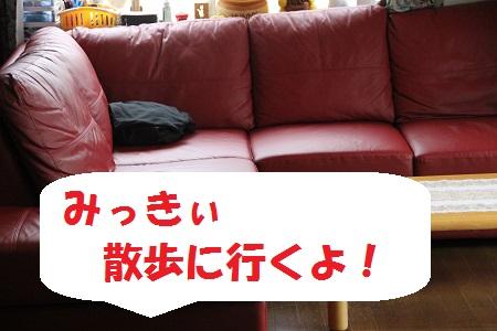 11_20130716232142.jpg