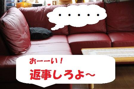 12_20130716232142.jpg