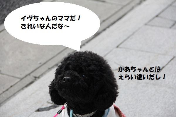 15_20130404170624.jpg