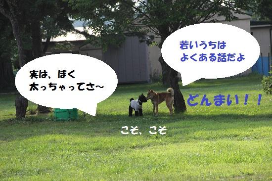 27_20130707213148.jpg