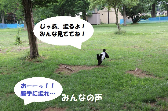 31_20130707213245.jpg