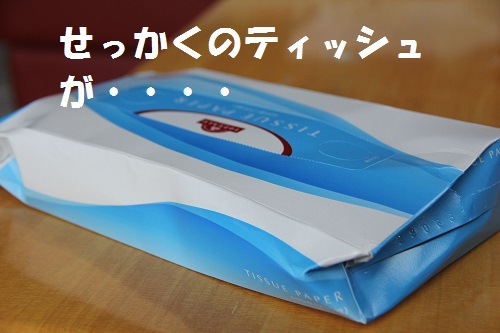 33_20130712000305.jpg