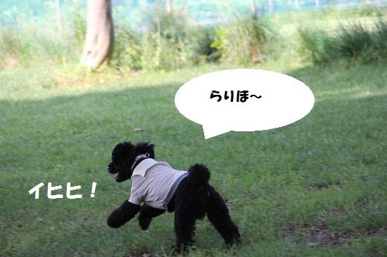 35_20130707213243.jpg