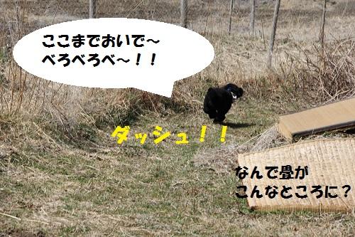 38_20130413172041.jpg