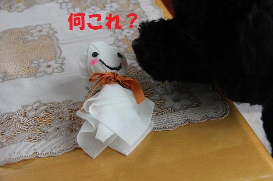 4_20130715234337.jpg