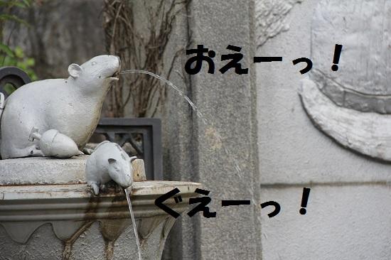 55_20130714233631.jpg