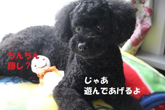 7_20130715234417.jpg
