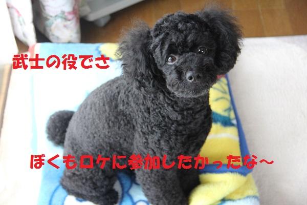 80_20130701002655.jpg