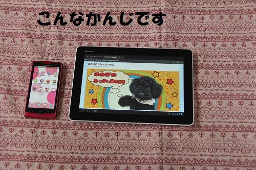 83_20130702011025.jpg