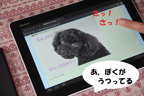 85_20130702011025.jpg