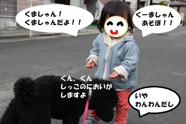 8_20130404153800.jpg