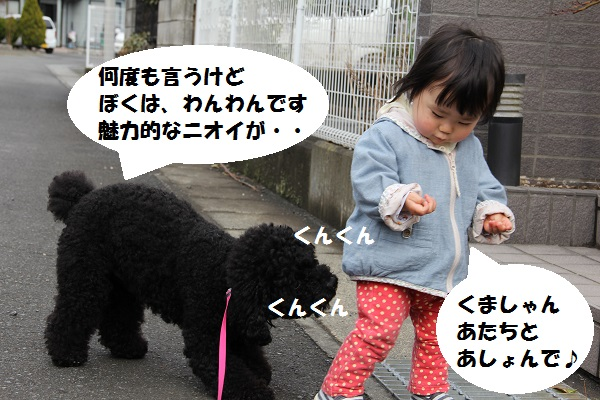 9_20130404153800.jpg