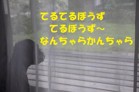 9_20130715234417.jpg