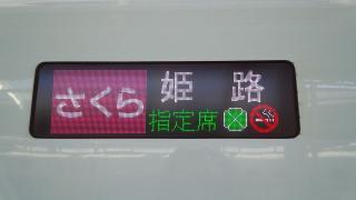 sakura-himeji-2.jpg
