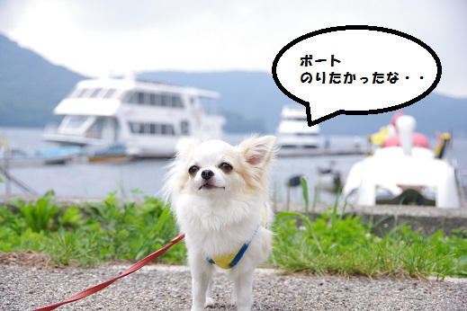 ごんどら11