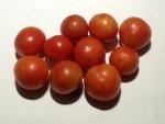 トマト141120
