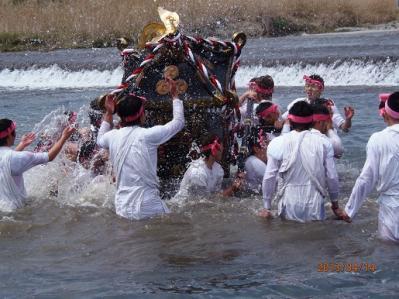 H.25.4.14羽村桜祭り2