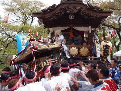 H.25.4.14羽村桜祭り8