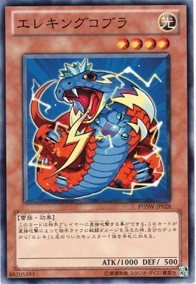 card100001805_1.jpg