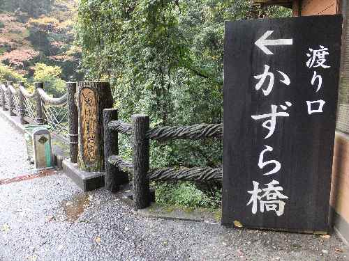 11g10iyakei1.jpg