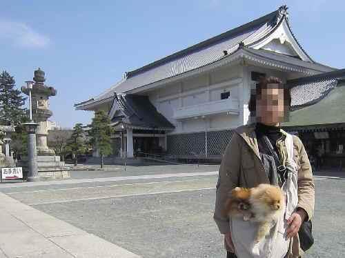 325toyokawa3.jpg