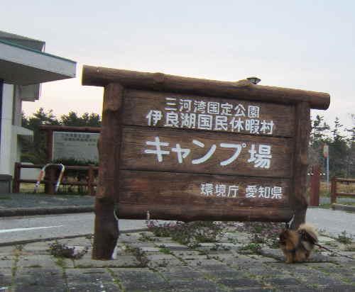 irakoniwa2.jpg
