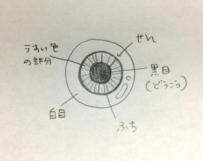 001理想の目玉