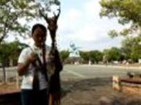 聖なる杖 長崎