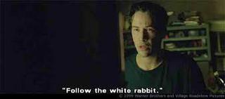White rabbit in Matrix 3