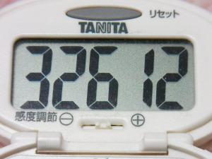 131207-251万歩計(S)