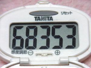 131208-251歩数計(S)