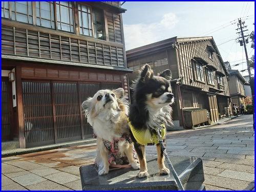 東山観光 (2)