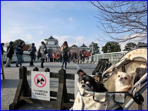 金沢城周辺 (1)