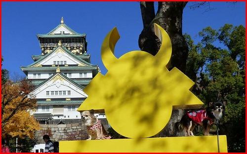 大阪城秋2014 (8)