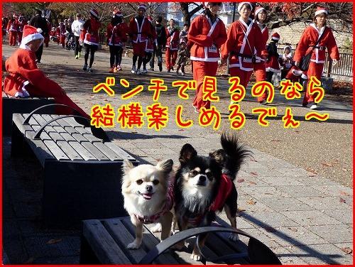 2014santa run (3)