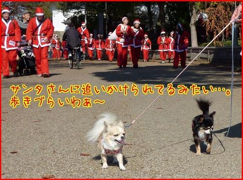 2014santa run (9)
