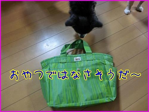 ABC贈り物 (2)
